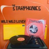 #NowPlaying Streets of Chicago (@link_wray) des @thestarphonics sur leur nouvel album Wild Wild Lover, prévu pour VENDREDI 11 JUIN !! 🔥🎸  Le lien pour les précommandes est dans la bio !   #rockabilly #linkwray #rockab
